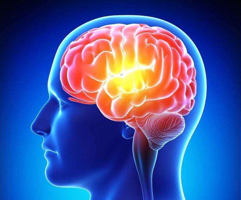 فوائد الجنسنج للذاكرة