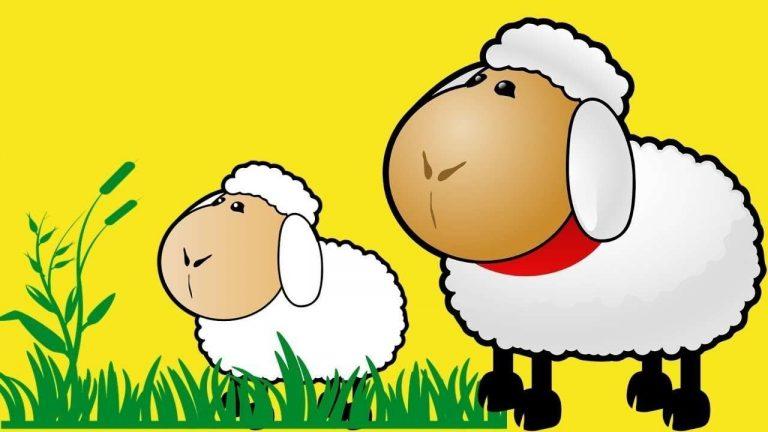 قصص للأطفال عن خروف العيد … اجمل القصص لتنمية إدراكهم بالعيد ومعناه