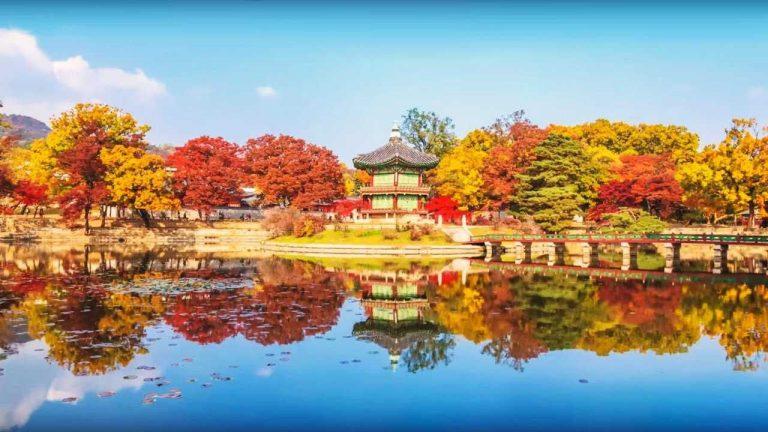 الطبيعة في كوريا الجنوبية – أفضل المناظر الطبيعية بكوريا الجنوبية