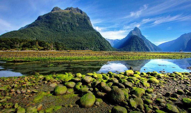 افضل وقت لزيارة نيوزلندا.. الجزيرة الأسيوية ذات الطبيعة الخلابة –