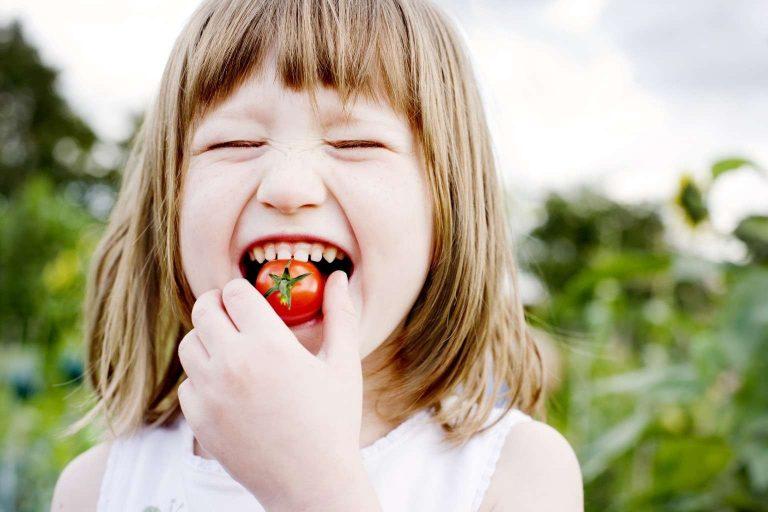 معلومات للأطفال عن الغذاء الصحي