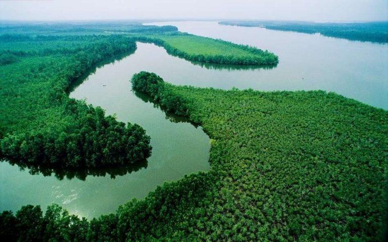 معلومات عن نهر النيجر .. تعرف على واحد من أطول أنهار أفريقيا ……