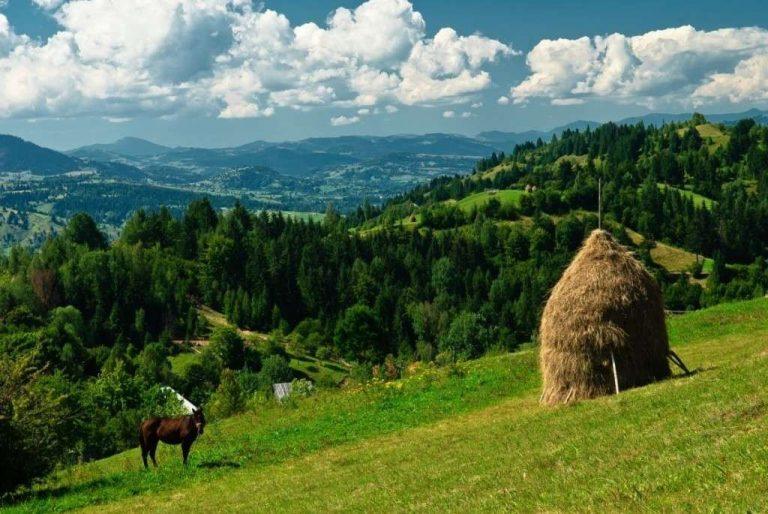الحياة الريفية في رومانيا .. تعرف على أجمل الأماكن الريفية التي ننصحك باستكشافها في رومانيا