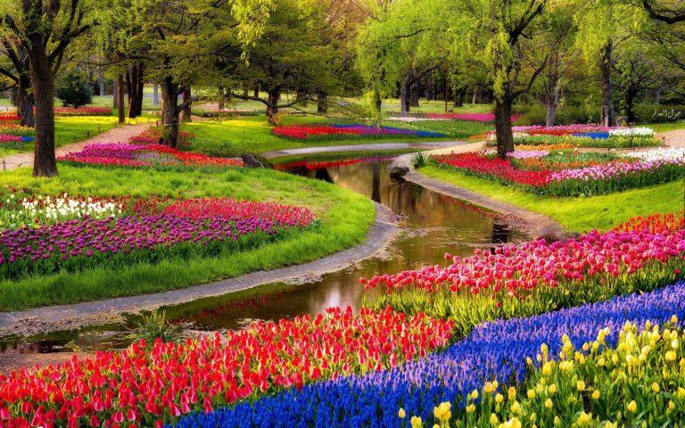 مميزات فصل الربيع .. أهم الأنشطة المميزة التي يمكنك القيام بها في الربيع