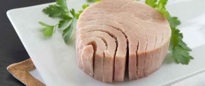 فوائد واضرار اكل سمك التونة مفيدة للقلب وتحافظ على ضغط الدم وتُحافظ على المناعة
