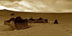 تاريخ الامارات قبل الميلاد أبرز المعلومات عن الفترات التّاريخيّة القديمة في الإمارات
