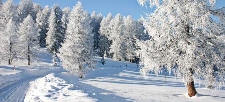 السياحة في ألمانيا في فصل الشتاء